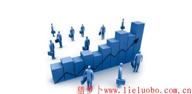 人力资源战略规划系统有哪些内容?