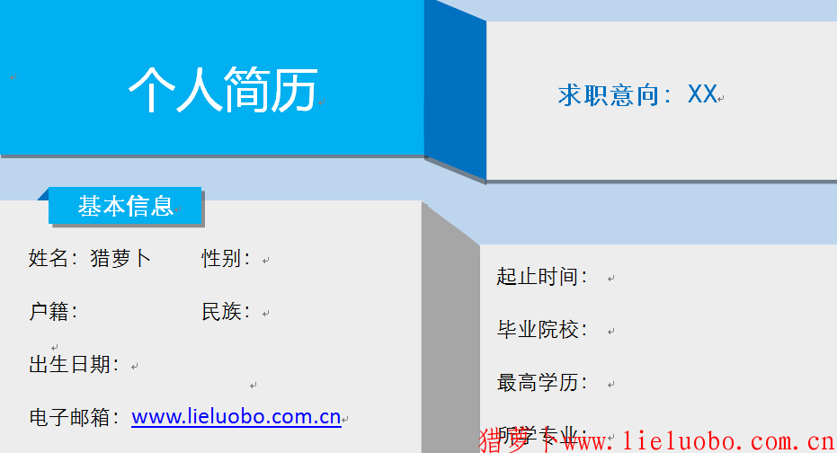 蓝灰色曲折个性简历模板(猎萝卜会员免费简历模板下载)